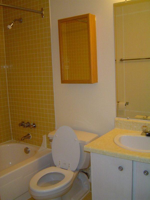 Déménagement - Ottawa, Canada (Salle de bain)