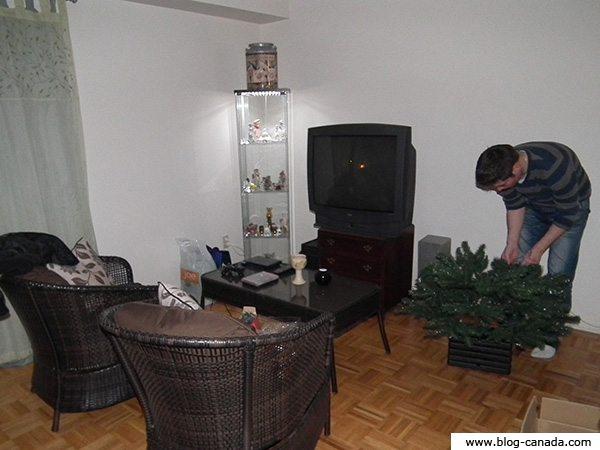 Photos de mon salon - Noël 2011