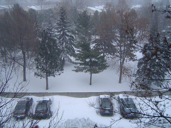 Tempete de neige (09-12-09) Ottawa, Canada