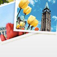 Festival des tulipes 2011 à Ottawa