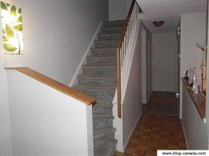 Photos des escaliers - Noël 2011