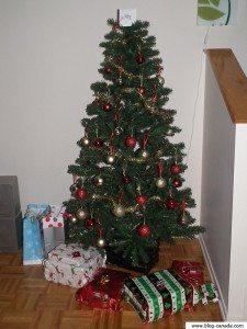 Photos de mon sapin - Noël 2011