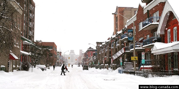 Veste pour l'hiver au canada
